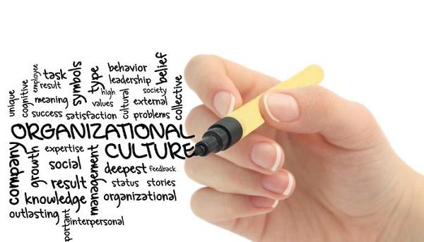 Curso sobre Formación de la Cultura Organizacional